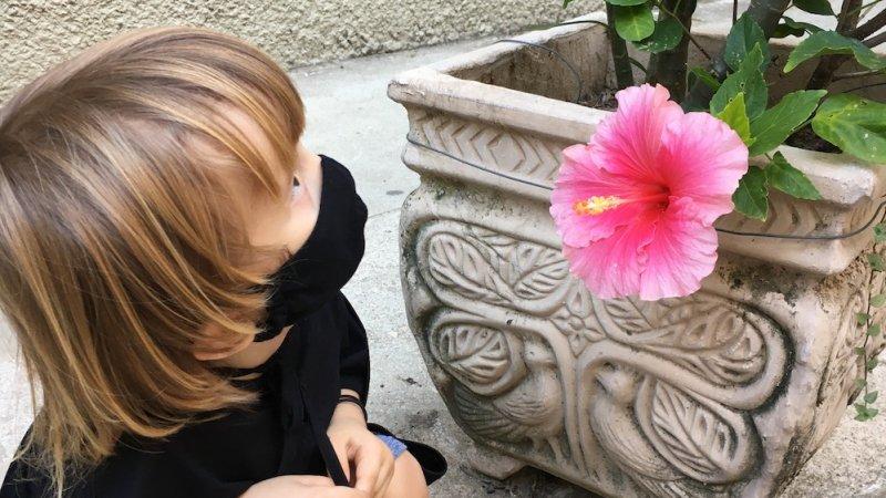 Luisa Benevides no blog Vida de Adulto