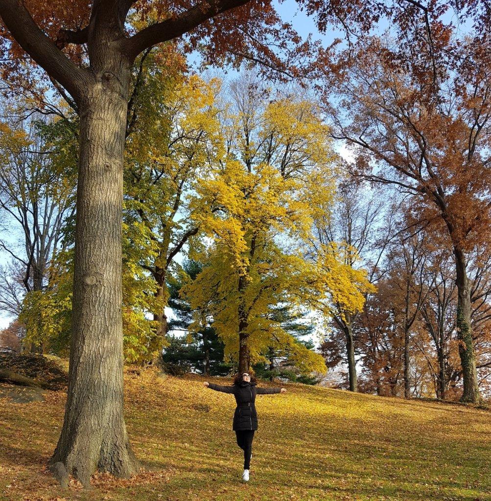Taciana Collet, no blog Vida de Adulto, escreve sobre aniversário ao outono
